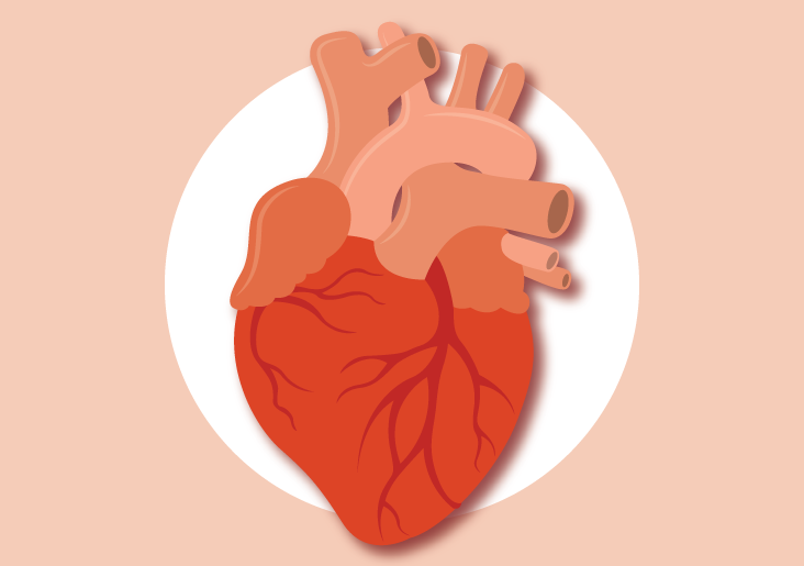 sleep apnea and afib